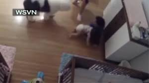 Tila Laminate Flooring Video 9 Year Old Saves Baby Brother As He Falls Off Changing