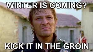 Brace Yourself Memes - brace yourself winter is coming memes are coming sean bean daily