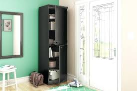 Entryway Cabinet With Doors Modern Entryway Cabinet Motauto Club