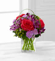 charlotte u0027s fiesta flowers better homes and gardens austin tx