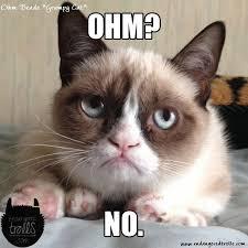 Grumpy Cat No Meme - ohm beads grumpy cat preview endangered trolls