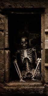 talking halloween skeleton flaming skull door wrap u2014 rm wraps