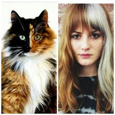 on trend hair colours 2015 tribeca salons on twitter on trend 2015 calico haircolor