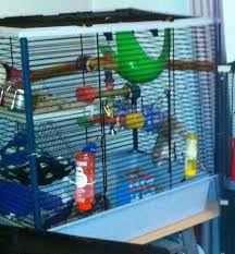 Cheap Rat Cage Recommanded Cages Gallifrey Stud U2013 Breeder Of Pet Rats