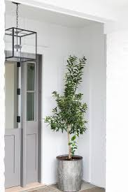 gray dutch front door with galvanized metal planter transitional