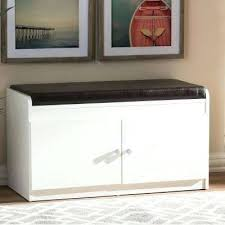 shoe cabinet with doors uk white storage closet studio compressed
