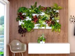 ikea indoor planter using wall mounted acrylic shelf in white