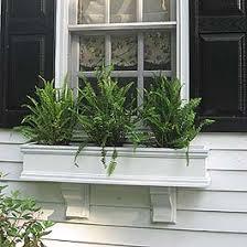 winter window box ideas