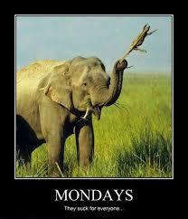 Monday Meme Images - 20 monday memes thug life meme
