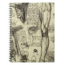 human anatomy notebooks u0026 journals zazzle