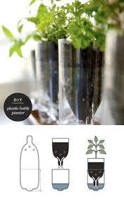 starting seeds u2026 with a 2 liter bottle diy greenhouse