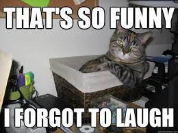 Thats So Meme - that s so funny i forgot to laugh picture quotes