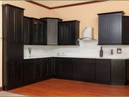 kitchen 6 simple ideas with assembled kitchen cabinets for