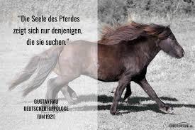 pferde spr che gustav rau die seele des pferdes