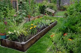 Advantage Of Raised Garden Beds - advantages of raised beds garden weasel
