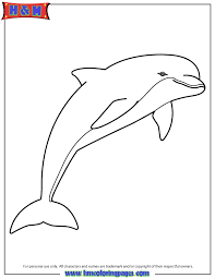 pink dolphin coloring u0026 coloring pages