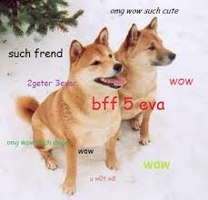 Top Doge Memes - two best friend doges doge know your meme