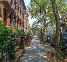 the best places to go near carroll gardens according to a local