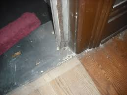 Laminate Flooring Door Jamb Break In Drives Old Louisville Homeowners To Revitalize Entry Door