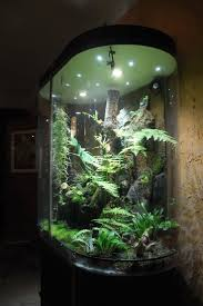 decorations big fish tanks for sale with exciting and uniquely