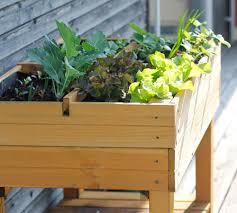 balkon hochbeet farming selbstversorgung auf balkon und terrasse
