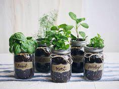 Diy Herb Garden Make An Adorable Herb Garden With Old Glass Jars Herbs Garden
