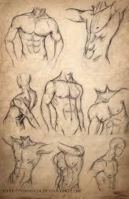 male body sketches