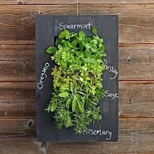 garden wall planters uk diy vertical wall planter wall mount