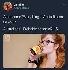 dopl3r com memes variable variableaus americans everything in