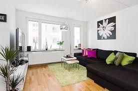 small studio apartment ideas for men with modern interior