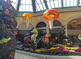 get u0027tanked u0027 at the bellagio conservatory u0027s new summer exhibit