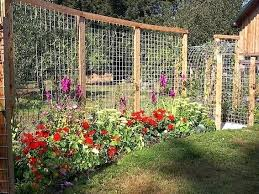 Ideas For Metal Garden Trellis Design Wood Garden Trellis Designs Garden Fence Ideas To Keep Your Plants