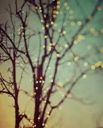 christmas lights gif find u0026 share on giphy