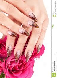closeup image of beautiful nails royalty free stock image image