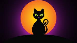 halloween wallpaper 1366x768 download wallpaper 1366x768 cat black moon night silhouette