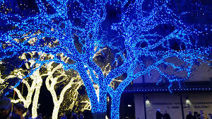 johnson city texas christmas lights photos of new braunfels and texas hill country snap nb