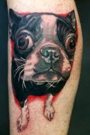 boston terrier tattoo designs my boston terrier portrait dog