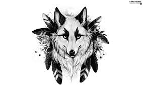 grayscale feather wolf 1920x1200