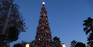 video buena vista street christmas tree lighting ceremony at
