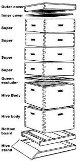 How To Make A Top Bar Beehive An Introduction To Beekeeping Beehive Backyard And Bees