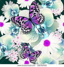 seamless background flowers orchid butterfly vector stock vector