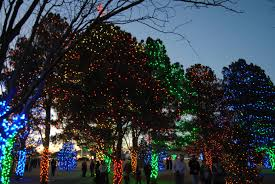 south plains college lights the tree klvt news