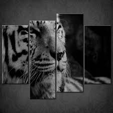 white tiger home decor learn black and white photography better photos 101 photo of a
