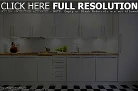 white on white modern kitchen dark wood floors gorgeous home