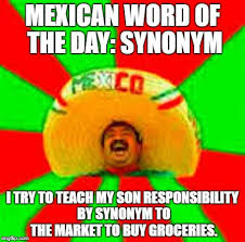 Mexican Word Of The Day Meme - mexican word of the day synonym i try to teach my son