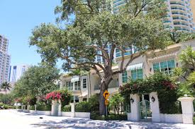 discover all the facts about las olas grand condos in downtown