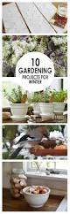 the 2358 best images about easy gardening on pinterest gardens