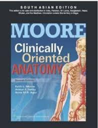 Netter Atlas Of Human Anatomy Online Atlas Of Human Anatomy International Edition 6th Edition Buy