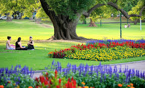 Perth Botanic Gardens Top 6 Picnic Spots In Perth Live Better Ventura Homes