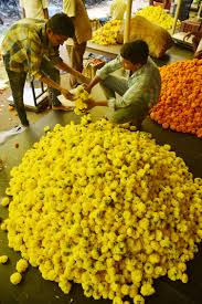 Wholesale Flowers Hyderabad U0027s Gudimalkapur Market Brimming With Bright Colorful